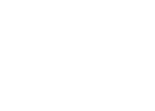 beauty business summit sponsor holistic dermal professionals